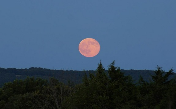 blue-moon-ava-missouri-ozarks