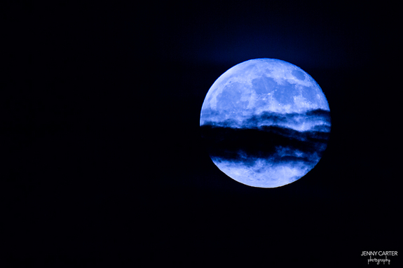 blue-moon-plano-texas