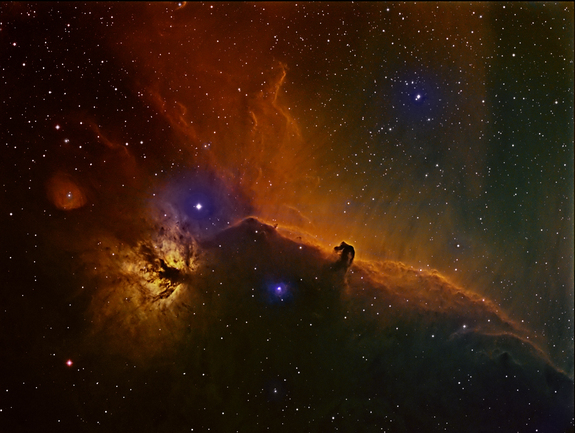 horsehead-nebula-ellison