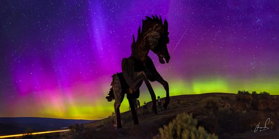 """Wild Horses""- Image Credit: Jason Matias"