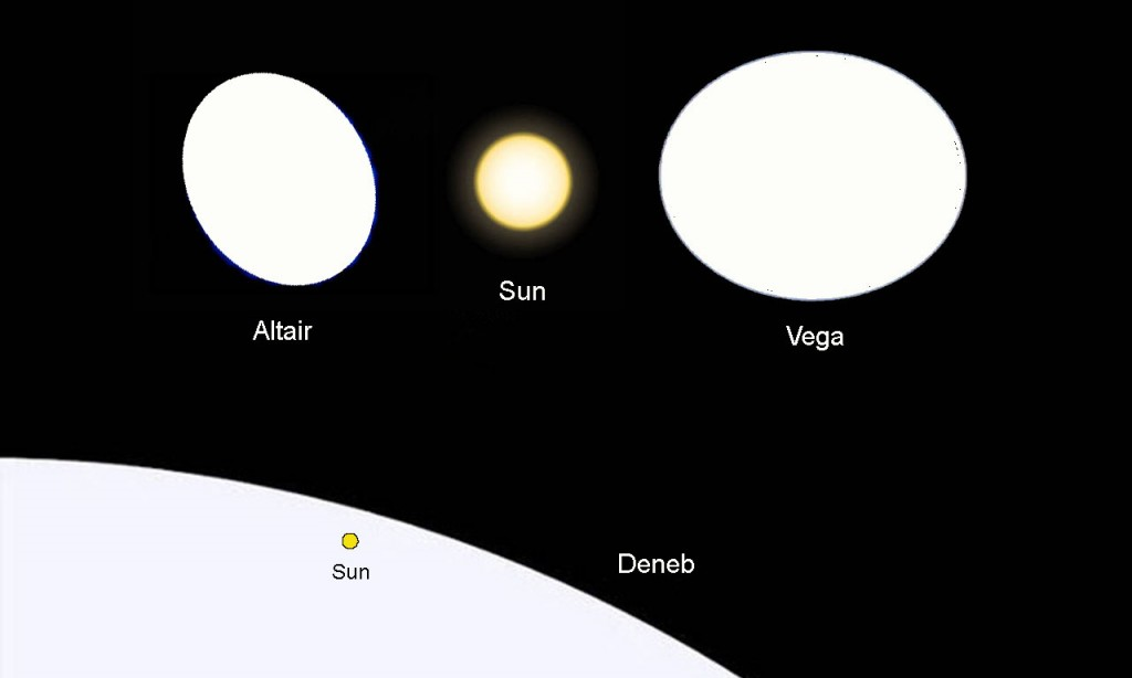 Visual comparison of Altair, the Sun, Vega, and Deneb. Image credit: http://pics-about-space.com/